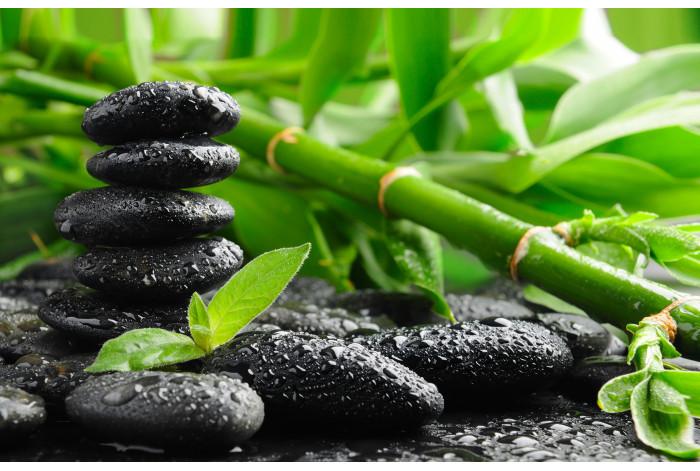 Модульная картина Бамбук и черные камни